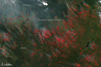 Fires in Democratic Republic of Congo, May 13, 2010. Fire is a pivotal part of agriculture across most of Africa. People burn crop residue to clear fields after harvest, and they burn forest and other natural vegetation to clear new land for farming. Fire is also used to drive game and grazing animals to new locations and to stimulate new growth in pastures (Source: Jeff Schmaltz, NASA).